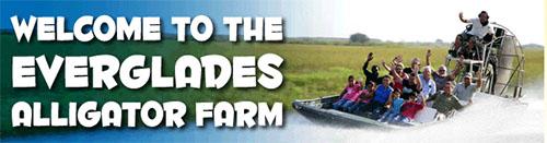 Alligator Farm Homestead Florida